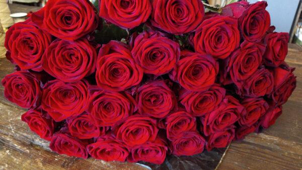 Mazzo rose rosse Ardesia